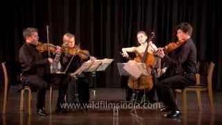 Eine Kleine Nachtmusik - entire performance