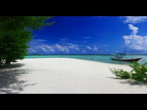 wonderful trip in Karimunjawa