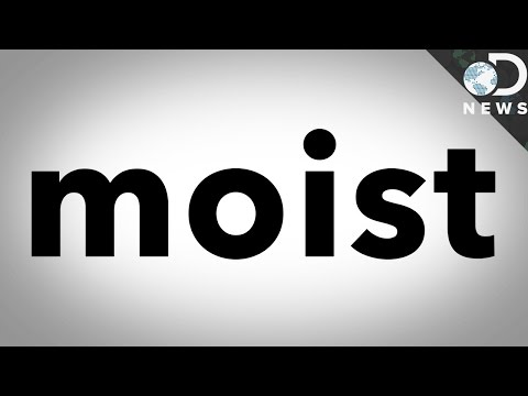 Why Does The Word Moist Make Us Cringe?