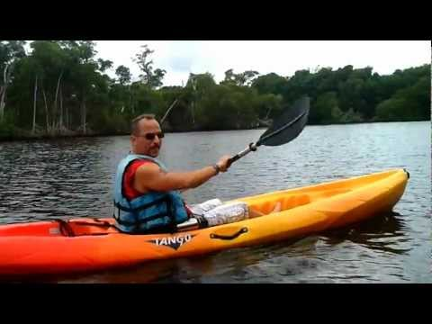 KAYAKING South Florida - OLETA STATE PARK & BLUE MARLIN FISH HOUSE