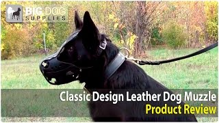 German Shepherd, Great Dane And Rottweiler Wearing Safe Dog Muzzle