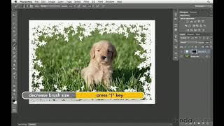Photoshop CS6 tutorial: How to create custom borders | lynda.com