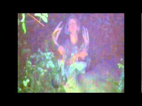 Lauren Baumer Buck video