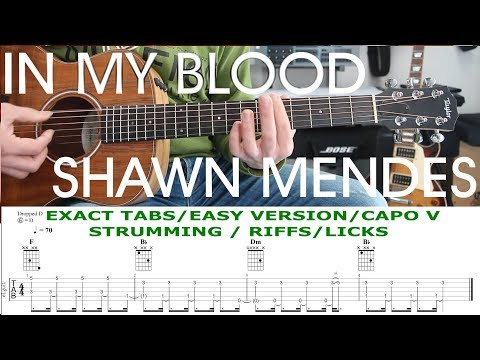 IN MY BLOOD, Shawn Mendes, Guitar Lesson, Tutorial, TAB, Chords, Strumming