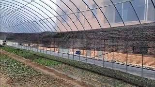 5분완성 비닐 하우스 농작물 차광막 태양 햇빛 차단망 …