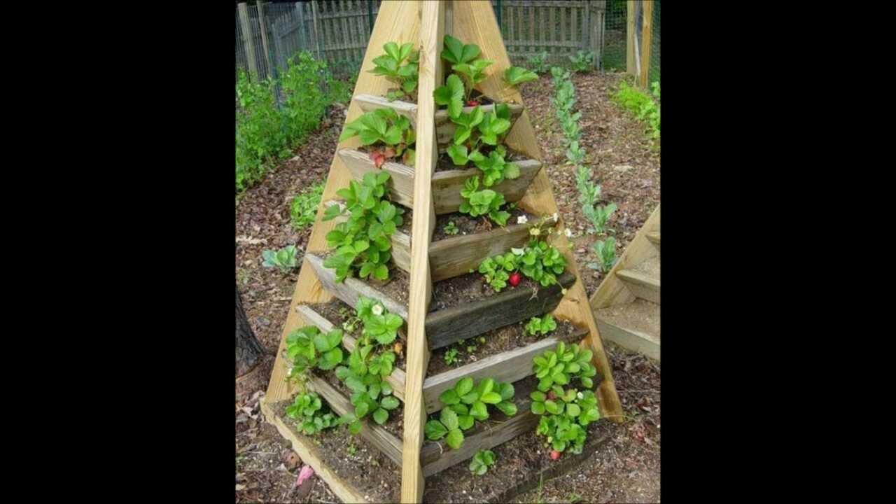 Allotment garden plans 2014 - YouTube