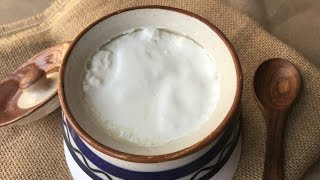 How to make Dahi or Curd at home - Thick Curd Recipe - In Bengali