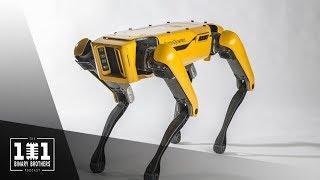 008 - Dynamic Bots