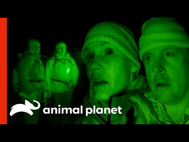 Ranae And Bobo's Eventful Night In The Olympic Peninsula | Finding Bigfoot