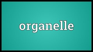 Organelle Meaning
