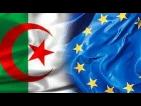 شاهد الرد الجزائري على تدخل الاتحاد الأوروبي في شأن الداخلي