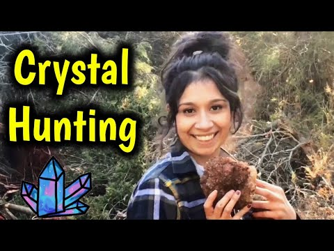 Quartz Crystal Collecting In The Woods Of Missouri