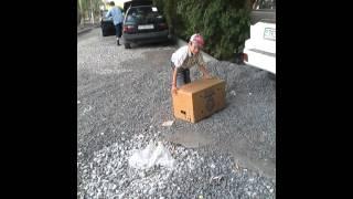 видео варежки в ювао