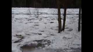 Pine Creek ice jam update 3