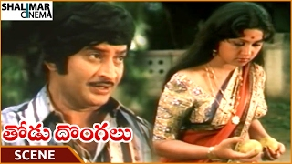Thodu Dongalu Movie || Krishna Try To Impress Madhu Malini || Krishna, Chiranjeevi || Shalimarcinema