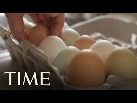 More Than 200 Million Eggs Recalled Over Salmonella Outbreak | TIME