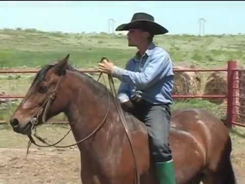 LX Ranch: Selecting Fresh Horses For Spring Roundup 2005