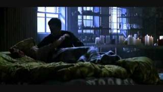 Alter Bridge - Blackbird Video [+ lyrics]