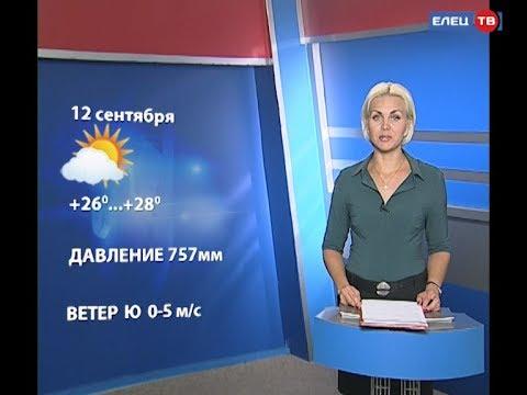 Прогноз погоды на 12 сентября