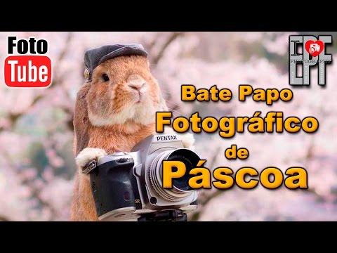Bate Papo Fotográfico de Páscoa - Tire suas dúvidas sobre a fotografia - Tarefas do Lar do Sit