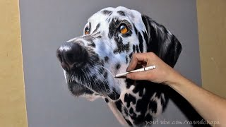 HOW TO DRAW A REALISTIC DALMATIAN WITH PASTEL