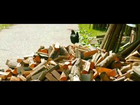 الفلم الهولندي الرائع ( دامي المومياء) - HD
