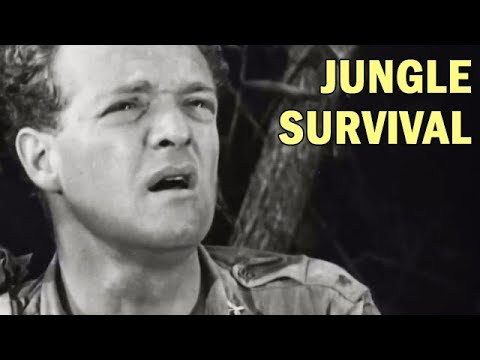 How to Survive in the Jungle | US Army Air Forces Training F