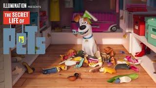 The Secret Life Of Pets – The Big Game Spot (HD) – Illumination