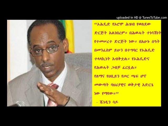 Power struggle between TPLF and OPDO: Junedin Sado - SBS Amharic