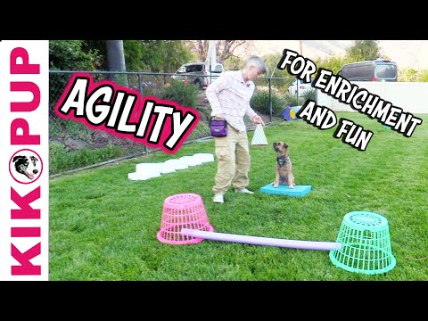 Agility for Enrichment