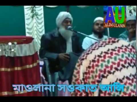 Soukat Ali Saheb Bangla Waz