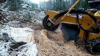 stump remove