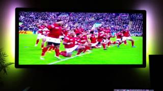 Tonga vs New Zealand rugby 2015 World Cup