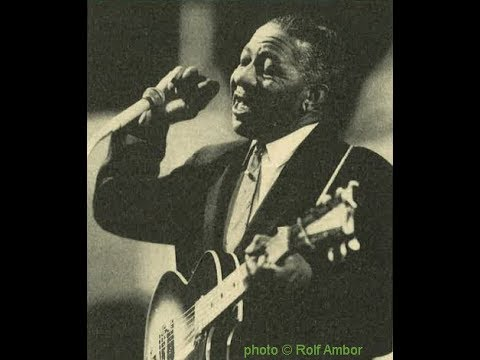 Lonnie Johnson - Careless Love (1963)