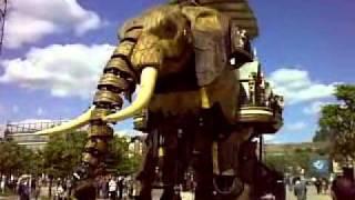 Éléphant de Nantes 14/05/2011