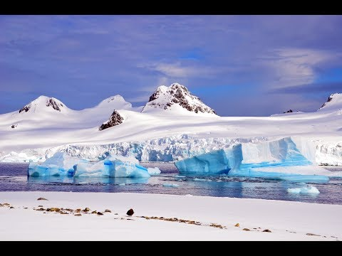 Antarctica in Luxury aboard Le Lyrial Expedition Cruise | ExpeditionTrips
