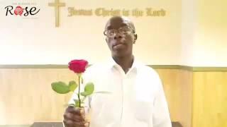 Blessed Rose Testimonial