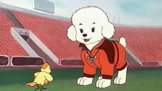 Ο Σίμπα στο Παγκόσμιο Κύπελλο - Ολόκληρη η ταινία / Simba Junior World Cup - Full Movie - GR thumbnail