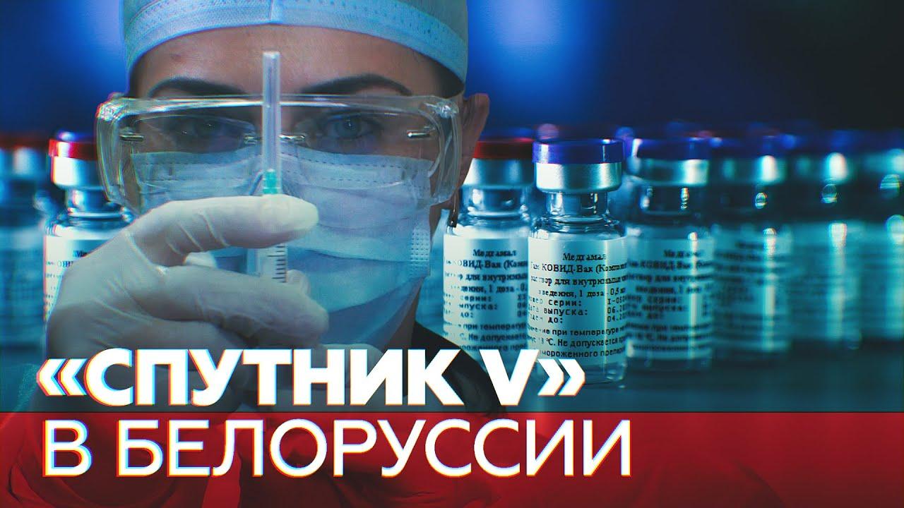 В Белоруссии начали испытания российской вакцины от коронавируса