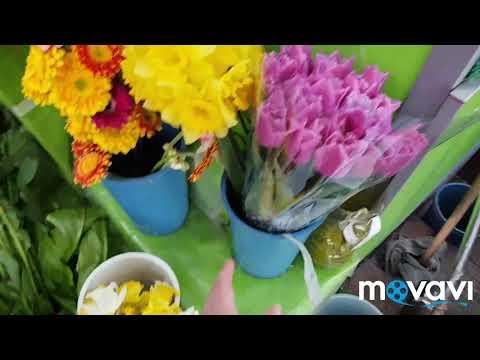 7 апреля в Армении- день матери/покупаю цветы для свекрови/наш рыбный обед