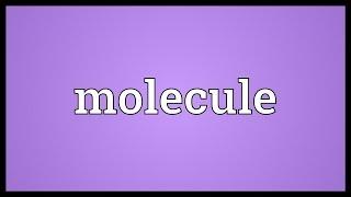 Molecule Meaning