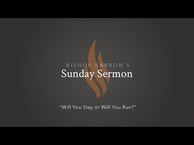 Will You Stay or Will You Run? — Bishop Barron's Sunday Sermon