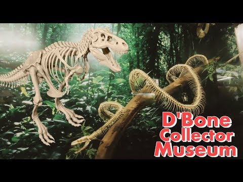 COOL BONE MUSEUM IN DAVAO!