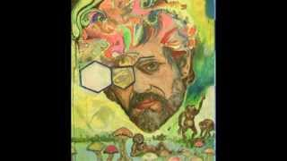Terence McKenna - LD50, Salvia Divinorum, Psilocybin, Ayahuasca, Spirituality