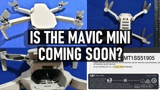 Is The Mavic Mini Landing In Stores Soon? | DansTube.TV
