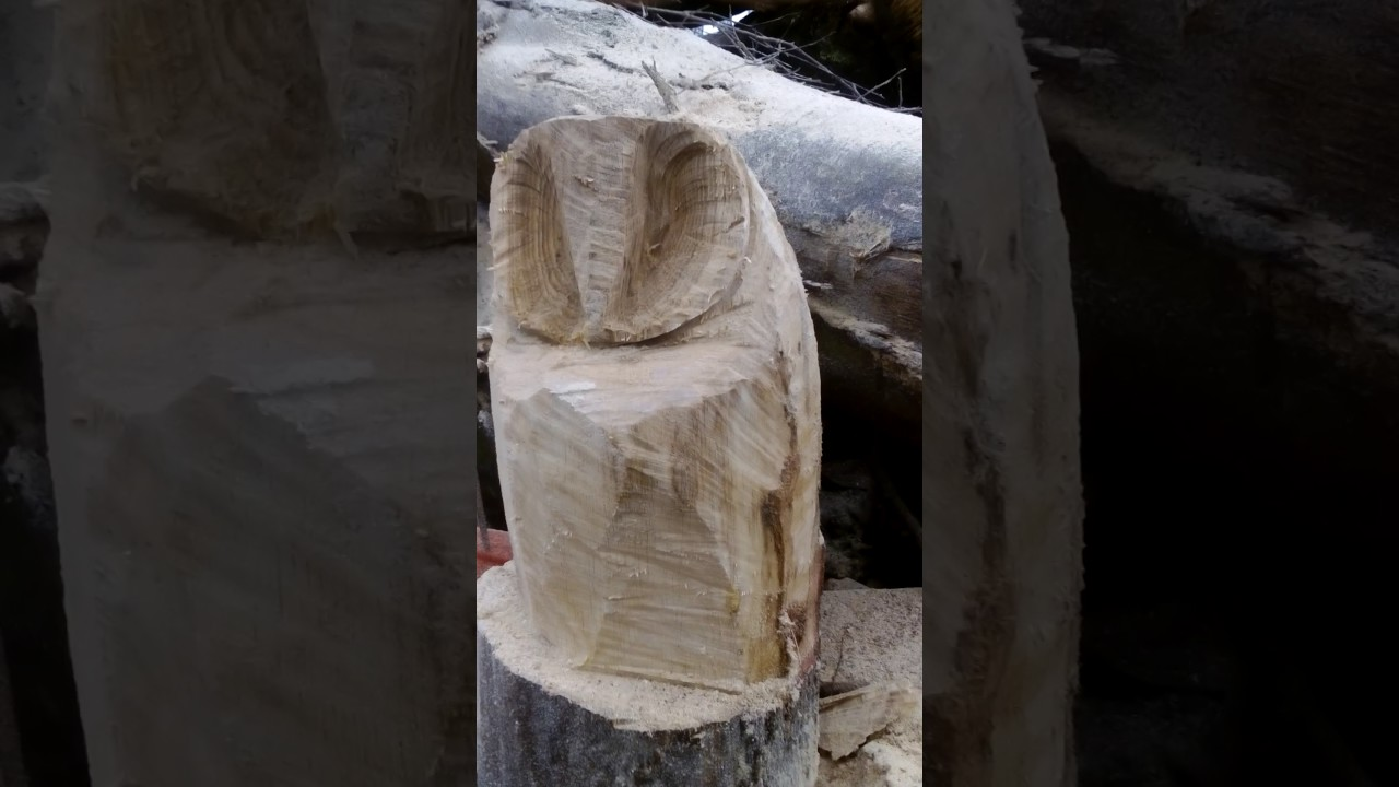chainsaw carved basic Owl