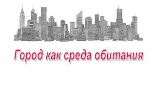 Город как среда обитания  Презентация по ОБЖ 5 класс