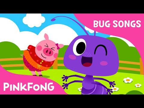 Ants in My Pants | Bug Songs | PINKFONG Songs