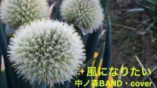 中ノ森band の #風になりたい を歌ってみました。 ネギ畑の写真をみてた...