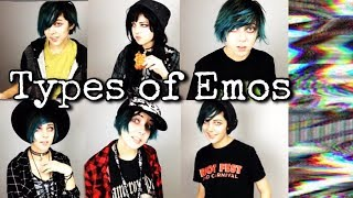 8 TYPES 0F EMOS